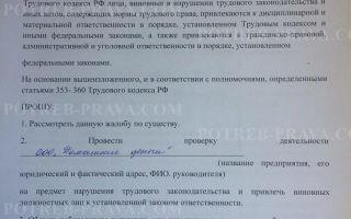 Трудовая инспекция — горячая линия по московской области
