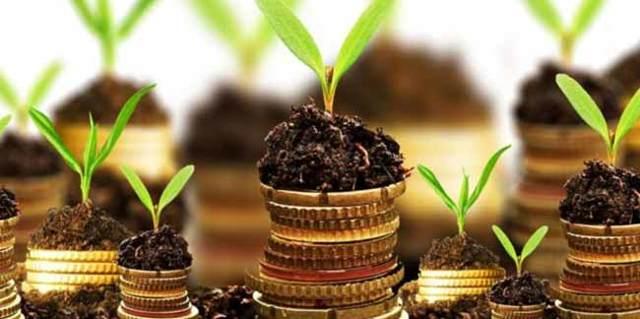 Налог на землю в 2020 году для физических лиц