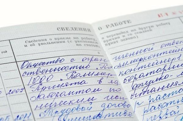 Входит ли учеба в стаж работы и в каких случаях?