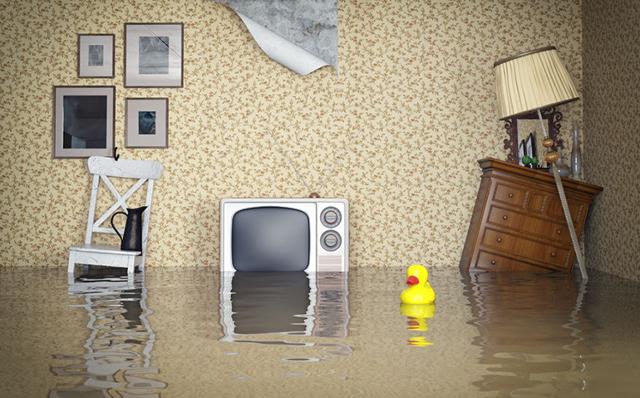 Что делать и как оценить ущерб, если затопили соседи сверху?