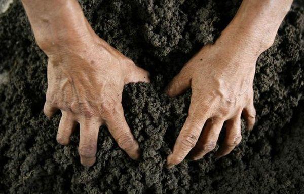 Самовольный захват земли - что это такое и чем грозит?